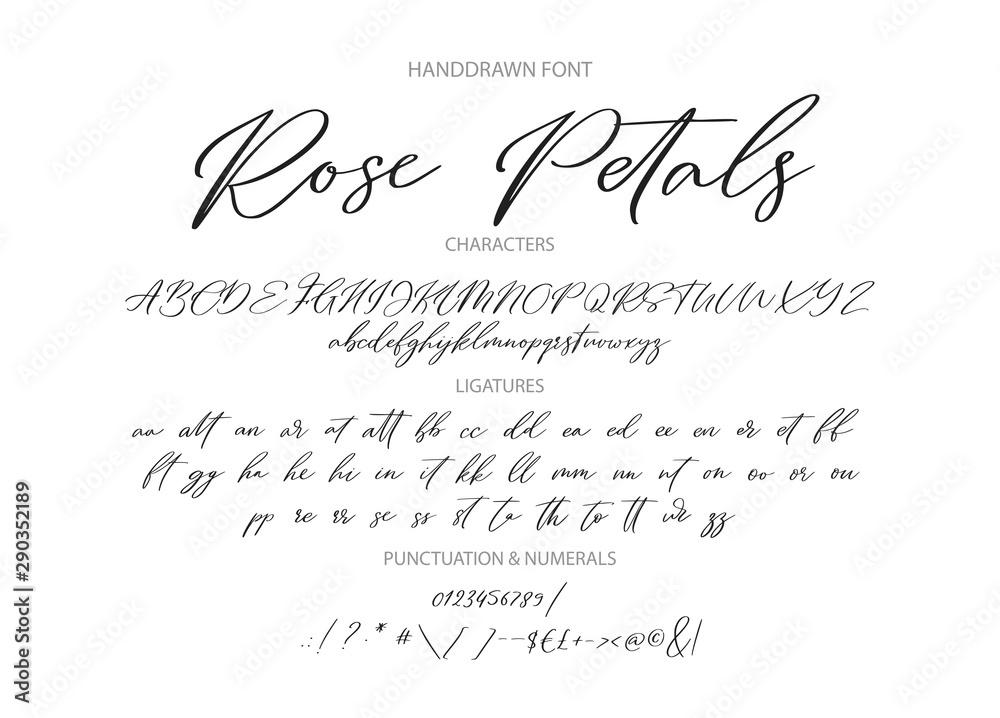 Fototapeta Hand drawn calligraphic vintage vector font. Distress grunge texture. Modern script calligraphy type. ABC typography latin alphabet with ligatures.