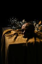 Mustard Death Still Life
