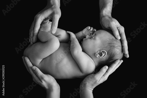 Cute newborn baby in the father's and mother's hands Fototapet