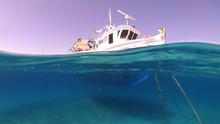 Above And Below Underwater Pho...