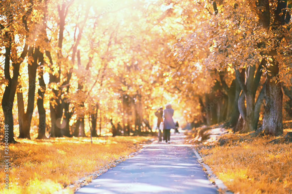 Fototapety, obrazy: End of summer season in the park