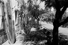 Detail San Xavier Mission Tuscon Arizona