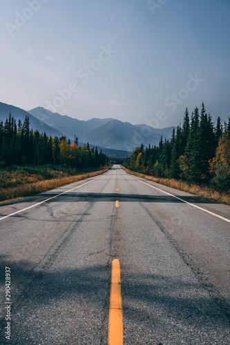 road in the mountains of Alaska Wallpaper Mural