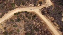 Aerial Drone 3 Horses Walking Dirt Path