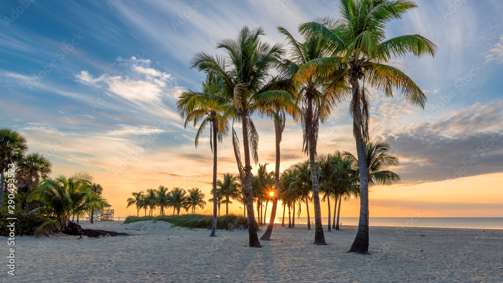 Fototapety, obrazy: Ocean beach at sunrise in Florida Keys