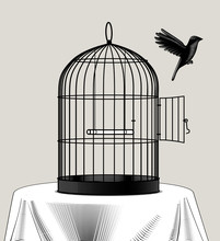 Bird Cage And A Black Bird Fly...