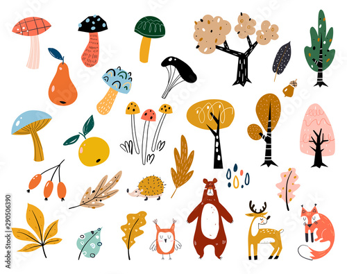 obraz dibond Hand drawn big vector set of various types of mushrooms, autumn leaves, rowan, acorn and chestnut. Big set of cute autumn animals, plants and sweets.