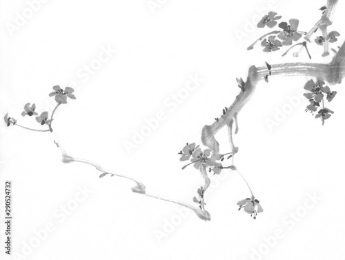 A plum tree branch in bloom. Traditional chinese painting