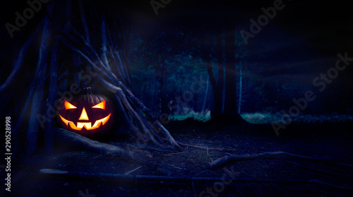 A single halloween Jack O Lantern hiding in a wood shelter, campsite on the forest floor on the left side of frame with space for text on the right. - 290528998