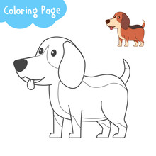 Cute Beagle Puppy For Coloring...