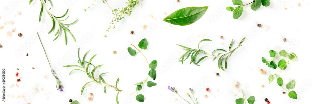 Fototapety, obrazy: Culinary herbs and spices, shot from above on a white background, cooking pattern, a flat lay panorama