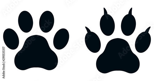 obraz lub plakat Set of paw prints