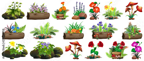Photo sur Aluminium Jeunes enfants Large set of colorful flowers on rocks and wood