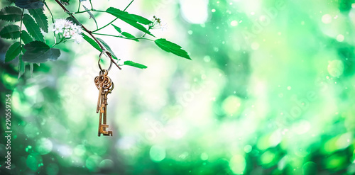 vintage golden key in forest. magical composition with beautiful key in nature, concept secret garden, summer bright mystery background. banner, copy space. soft focus
