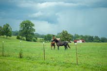 Horses Play In Pasture With Dark Sorm Clouds Overhead