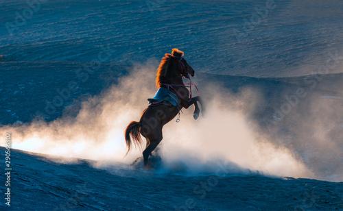 Valokuvatapetti Red horse rearing up on desert in the background dusty sunset