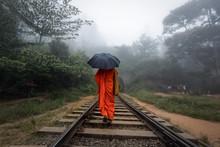 Person Walking On Train Tracks...