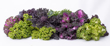 Bunch Of Different Varieties O...