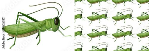 Keuken foto achterwand Kids Seamless and isolated animal pattern cartoon