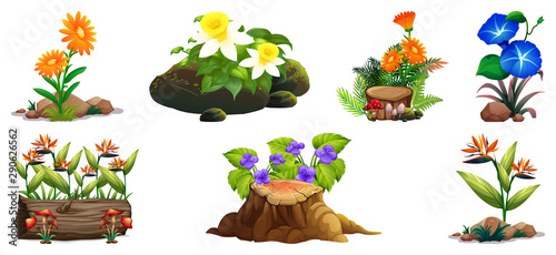 Keuken foto achterwand Kids Large set of colorful flowers on rocks and wood