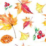red autumn, autumn leaves , watercoloron a white