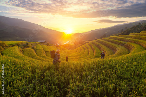 Foto auf Gartenposter Reisfelder Mu Cang Chai town/Vietnam - Sep,04,2019: H'Mong women are working on the rice terrace, Rice fields on terraced in rainny season at Mu cang chai, Vietnam. Rice fields prepare for transplant at Vietnam
