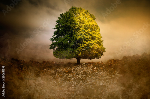 Lonely Tree in unreal surreal environment garbage nature pollution CO2 Canvas Print