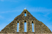 Old Church Roof Of Battle Abbe...