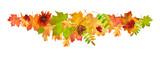 Autumn Leaves Border - 290665588