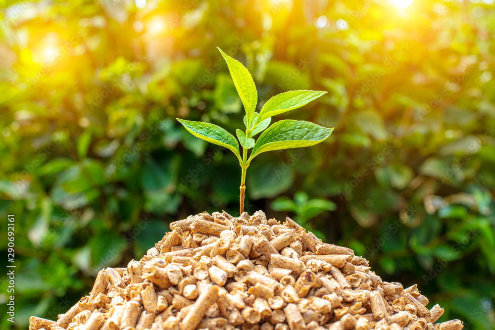 Fototapety, obrazy: small pile of wood pellets with on top of green leaves.
