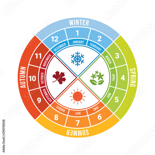 Fotografia 4 season circle diagram chart with icon sign and month time vector design