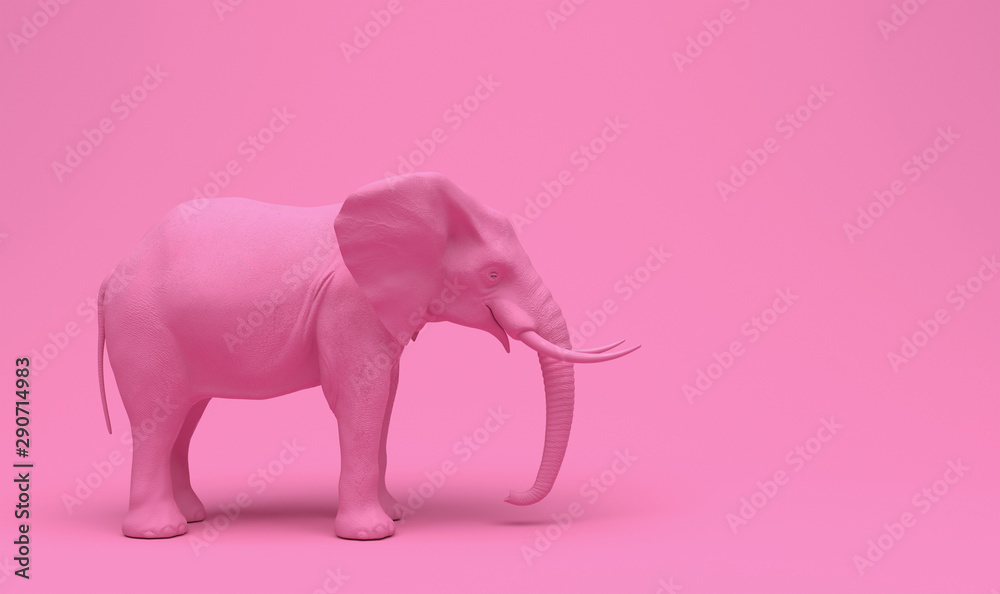 Fototapeta One plain pink realistic elephant isolated on a pink background. Creative conceptual monochrome illustration with copy space. 3D rendering.
