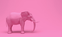 One Plain Pink Realistic Elephant Isolated On A Pink Background. Creative Conceptual Monochrome Illustration With Copy Space. 3D Rendering.