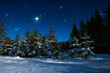 Leinwanddruck Bild - Christmas background with stars and trees in winter forest.