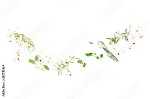Obraz na plátně  Culinary aromatic herbs on a white background, a flat lay composition with a pla