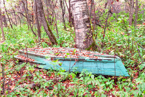 Autumn landscape with old blue green wooden fishing boat aground on the grass in a forest by river Canvas Print