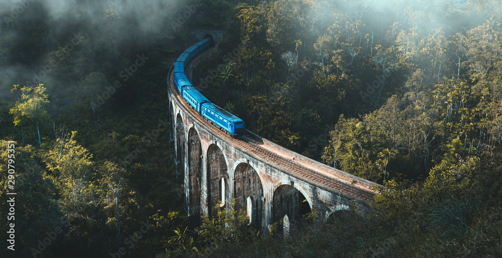 Fototapeta Demodara nine arch bridge, Ella, Sri Lanka