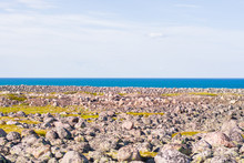 Rocky Seashore. Huge Rounded Boulders On The Beach. The Barents Sea Shimmers With All Shades Of Blue In Summer. Among The Stones Can Be Seen Islands Of Grass And Moss, Somewhere There Are Berries