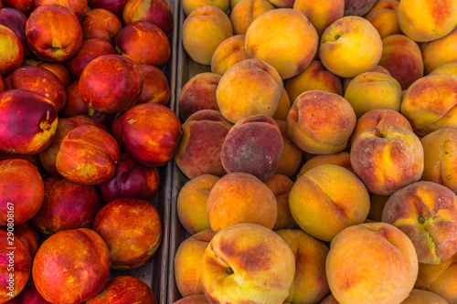 Market Fruit Background 2