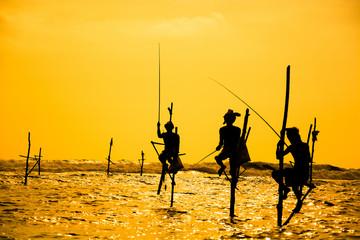 Traditional stilt fisherman in Sri Lanka