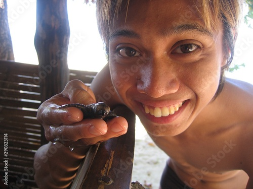 Fotografie, Obraz  Extreme closeup shot of a happy male holding a baby turtle or hatchling