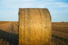 Side View Of A Hay Bale. Hay B...