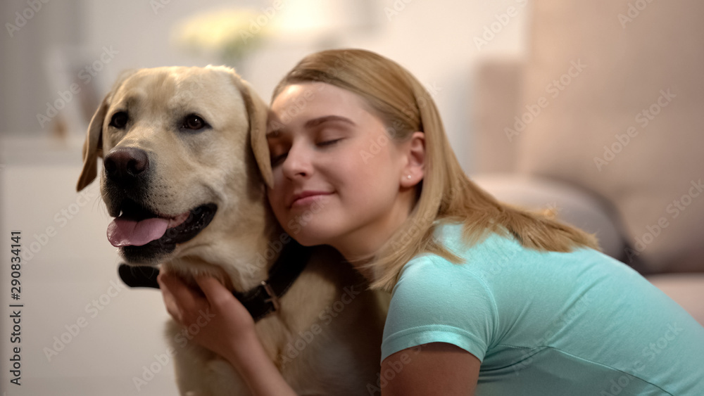 Fototapety, obrazy: Young female hugging adorable labrador dog, housepet, best friend concept