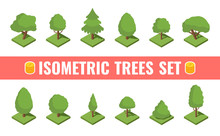 Big Isometric Tree Set. Big And Small Trees, Pine, Shrubs, Felled Trees, Cacti, Palms. Vector Illustration.