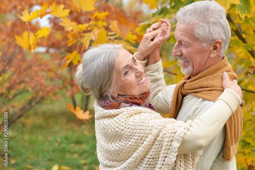 Fotografia  Portrait of happy senior woman and man