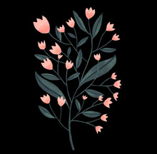Little Pink Flowers On Black Background. Green Branch With Leaves.