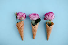 Three Pink Roses In Ice-cream Cones On Light Blue Background Above. Creative Floral Minimal Background, Beauty Blogging. Copyspace For Text, Close Up