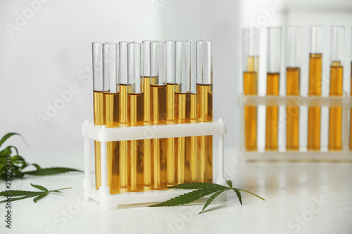 Cuadros en Lienzo  Test tubes with urine samples and hemp leaves on table