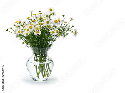 Deurstickers Lelietje van dalen Bouquet from meadow chamomile