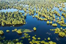 Flood In Kopacki Rit Nature Park, Croatia